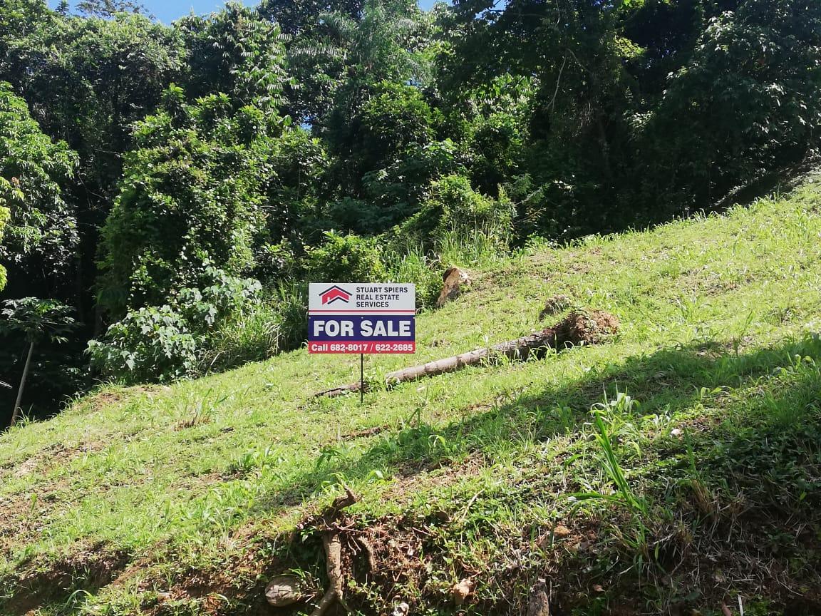 Sloping Land with Gorgeous Mountain View in Grace Gardens Santa Cruz - $850,000.00